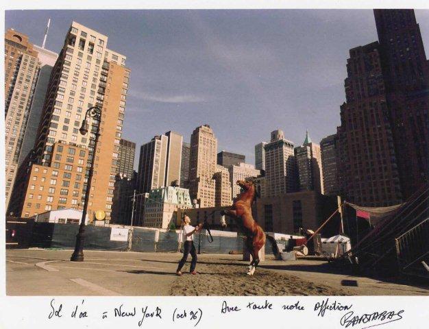 SOL D'OA à New York